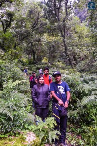 On the way to waterfall